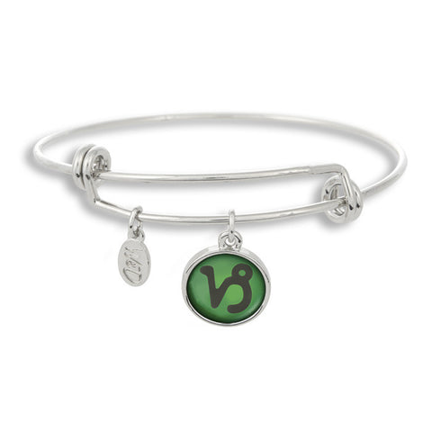 The Adjustable Band Bangle Bracelet featuring the color pop Capricorn astrology sign shows that your style is in the stars!