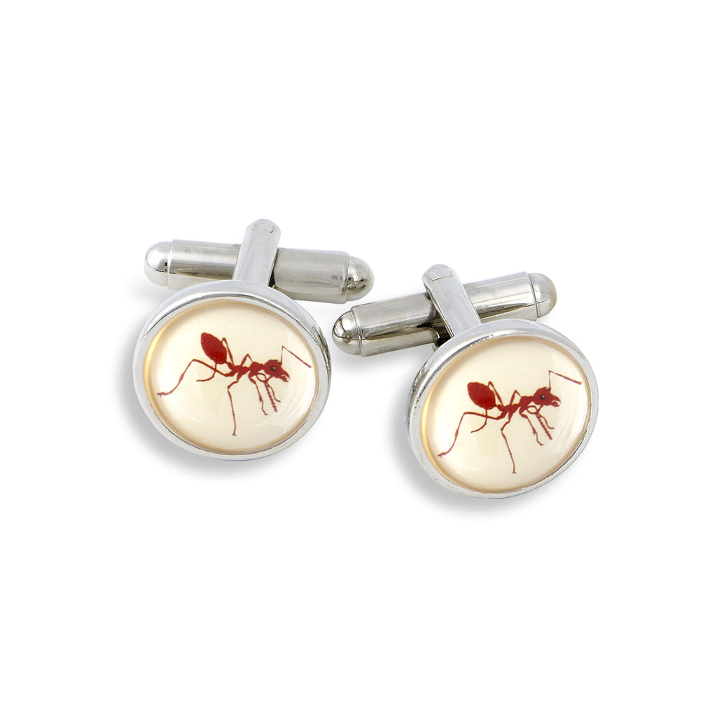 SilverTone Cufflink Set featuring the Red Ant