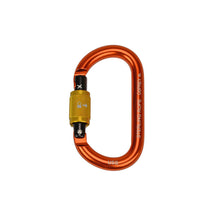 Load image into Gallery viewer, Sterling Osprey Carabiner