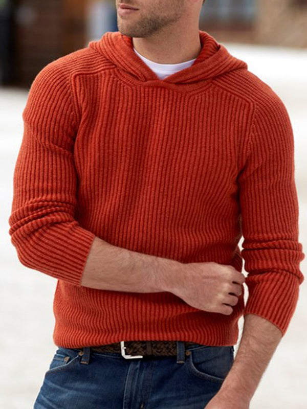 Standard Plain Hooded Fall Straight Sweater