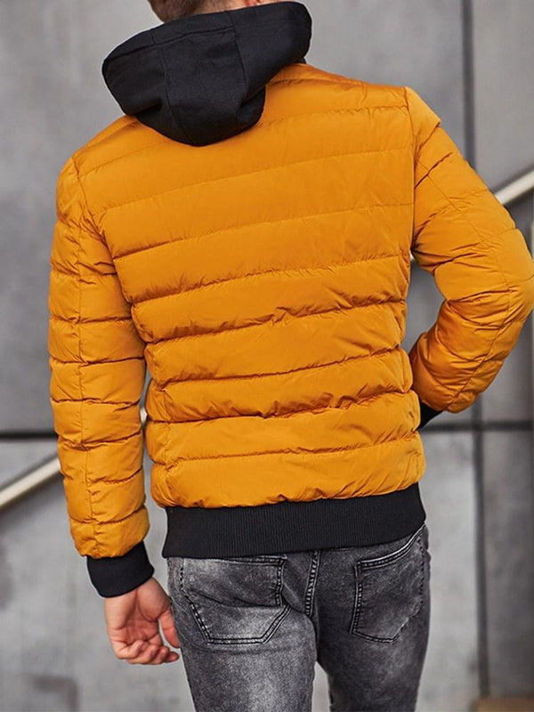 Color Block Hooded Standard Casual Zipper Down Jacket