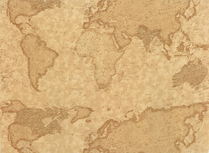Passport-World Map on Gold