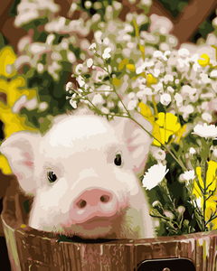 Cute Little Pig Paint by Number Kits