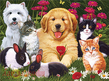 Load image into Gallery viewer, Dogs and Cats Paint by Number Kits