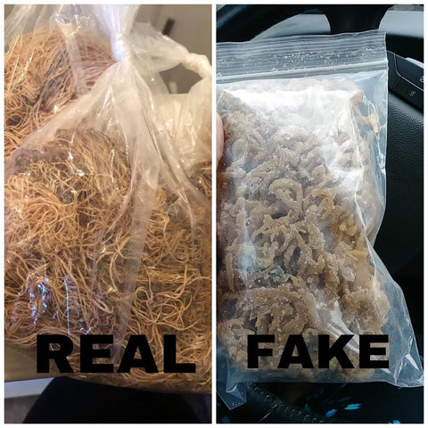 real vs fake sea moss