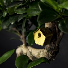 Tiny Birdhouse for your Plants