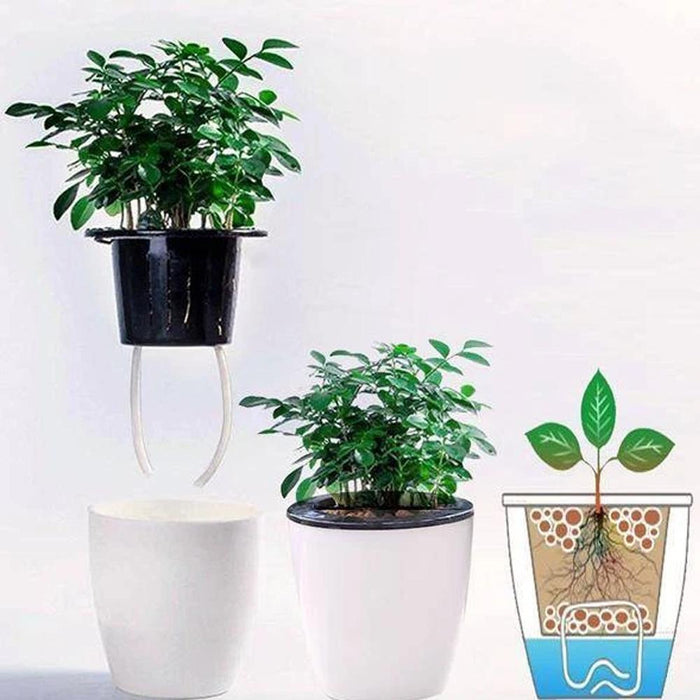 Wowslife™ Automatic water-absorbing flower pot for lazy people