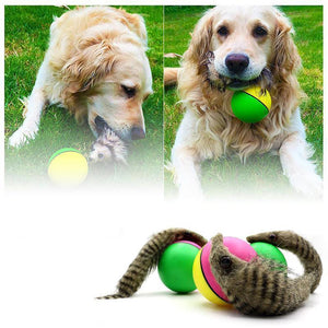 Wowslife™ Weasel Ball For Pets