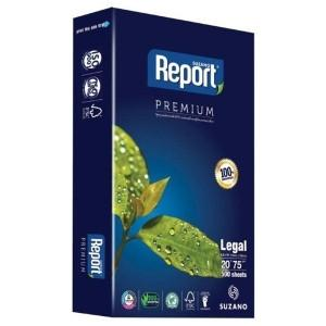 Report Eco-Friendly Paper
