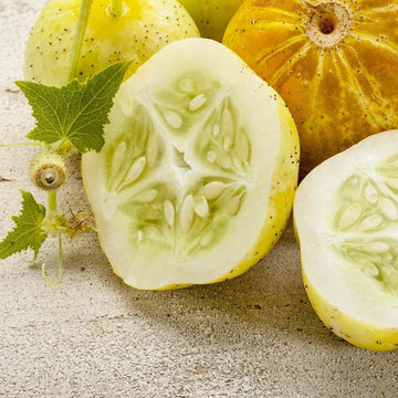 Cucumber, Lemon Seeds
