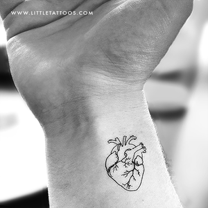 Anatomical Heart Outline Temporary Tattoo - Set of 3