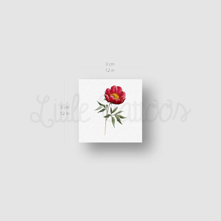 Peony Temporary Tattoo - Set of 3