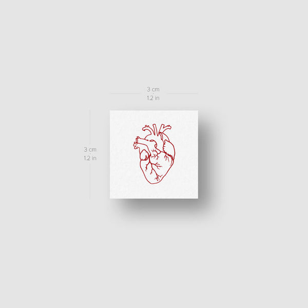 Small Red Anatomical Heart Temporary Tattoo - Set of 3