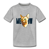 Cat Face - Meow - Kids' Premium T-Shirt - heather gray