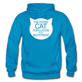 Cats - My Best Friends - White - Gildan Heavy Blend Adult Hoodie - turquoise