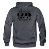 Cats Grew Into Kittens - Black - Gildan Heavy Blend Adult Hoodie - charcoal gray