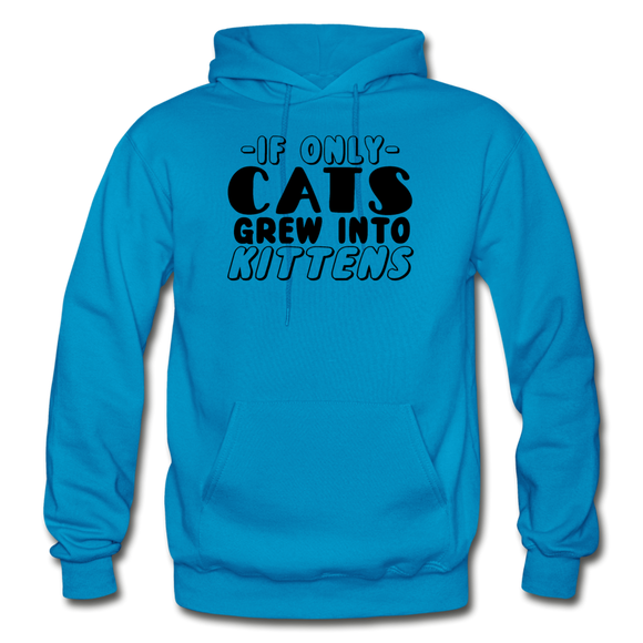Cats Grew Into Kittens - Black - Gildan Heavy Blend Adult Hoodie - turquoise