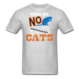 There Are No Ordinary Cats - Unisex Classic T-Shirt - heather gray
