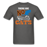 There Are No Ordinary Cats - Unisex Classic T-Shirt - charcoal