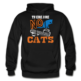 There Are No Ordinary Cats - Gildan Heavy Blend Adult Hoodie - black