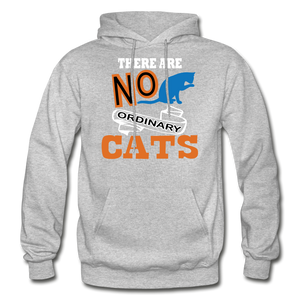 There Are No Ordinary Cats - Gildan Heavy Blend Adult Hoodie - heather gray