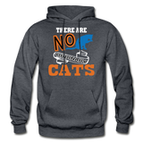 There Are No Ordinary Cats - Gildan Heavy Blend Adult Hoodie - charcoal gray