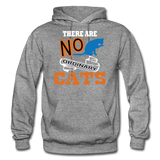 There Are No Ordinary Cats - Gildan Heavy Blend Adult Hoodie - graphite heather