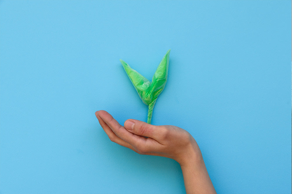 hand holding a plant with blue background