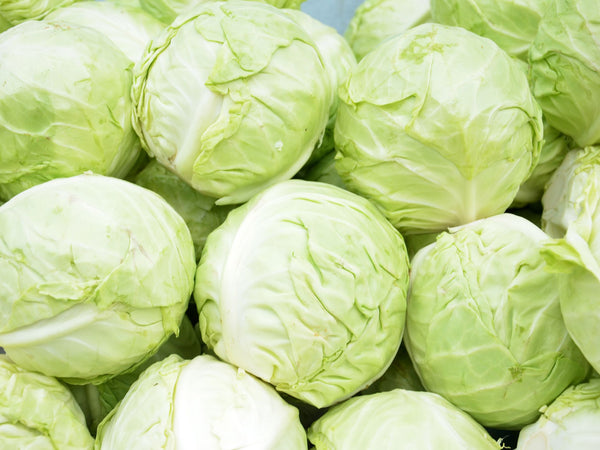 Cabbage / piece (approx 1kg)