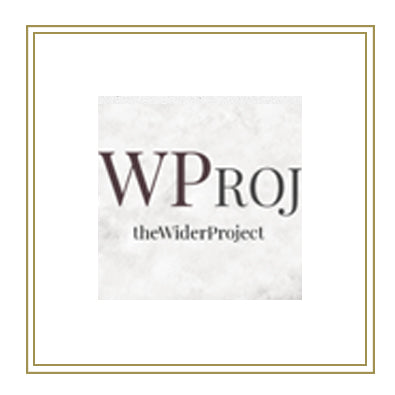 THE WIDER PROJECT