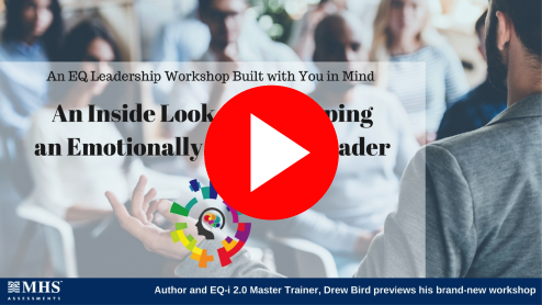 Emotionally Effective Leader Workshop