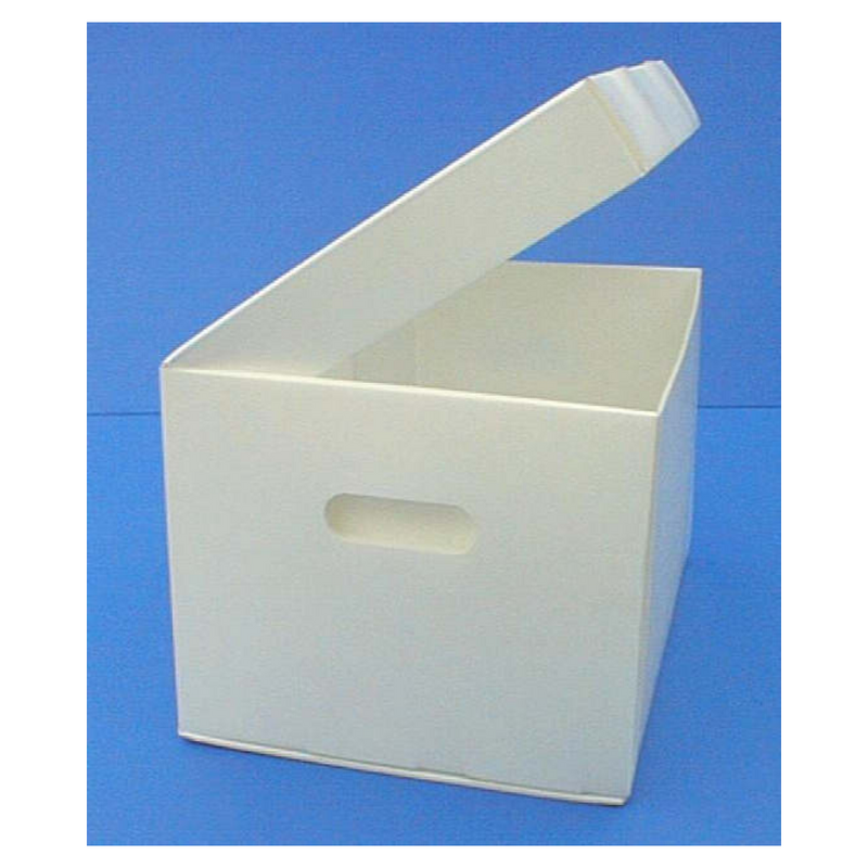 Polypropylene File Box