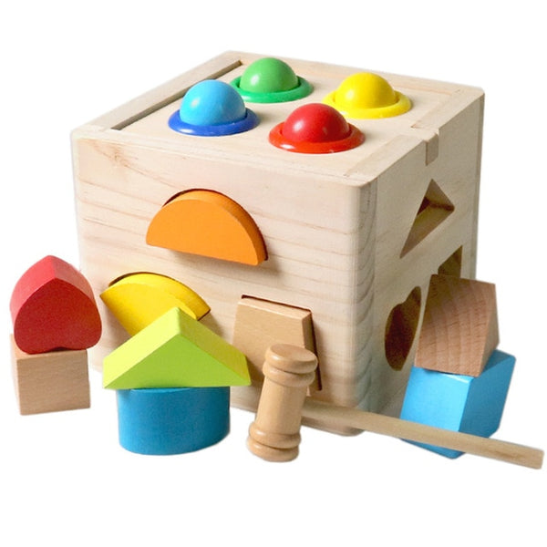 Montessori Cognitive Matching Cube (Wooden)