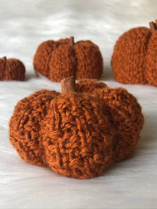 The Textured Pumpkin