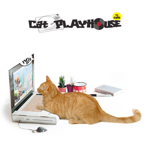 Cat Cardboard Laptop Scratching Pad by Suck UK
