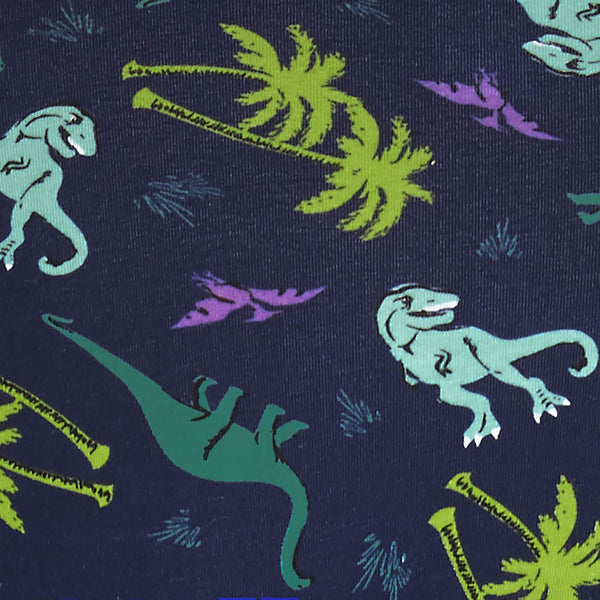 Land of the Dino Underwear by Sock It To Me