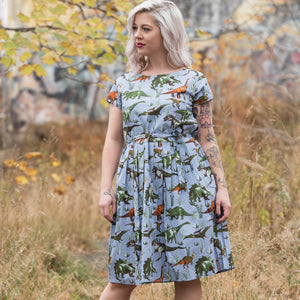 Adventure Dinosaur Dress by Run and Fly