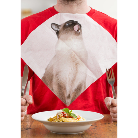 Cat Napkins by Suck UK