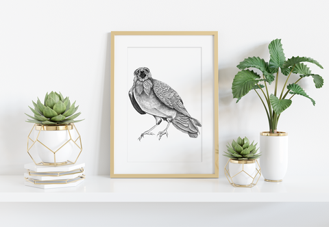 Squawking Crow Art Print