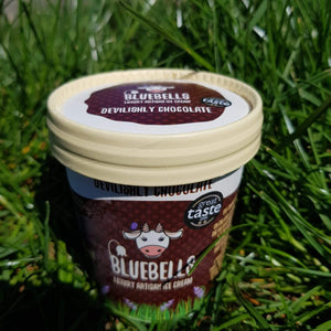 12 Box 125ml Ice Cream - Devilishly Chocolate