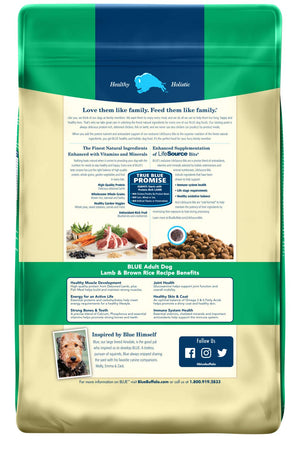 Blue Buffalo Life Protection Formula Natural Adult Dry Dog Food