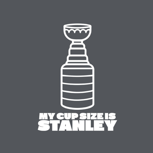 My Cup Size is Stanley-womens basic tee-RivalTees