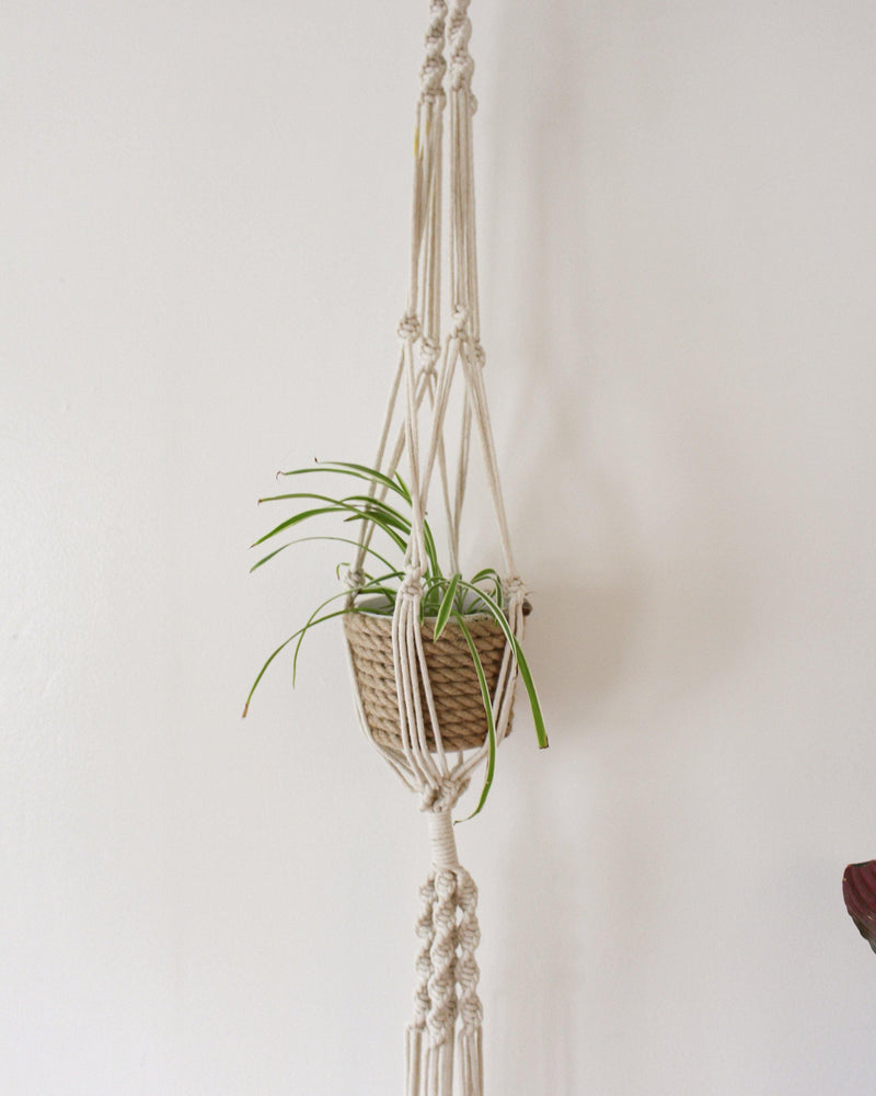 Tillandsia Macrame Plant Hanger - Double Plant Hanger - Air Plant Holder - Plant Hanger Indoor - Macrame Plant Holder - Pure Chakra