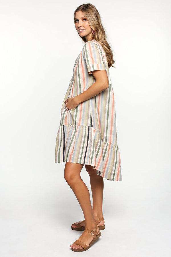 Roxanne Shift Dress in Safari Stripe