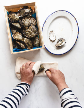 Oyster Shucker Knife