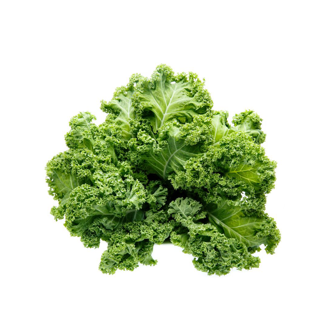 Green Curly Kale - 1 bunch