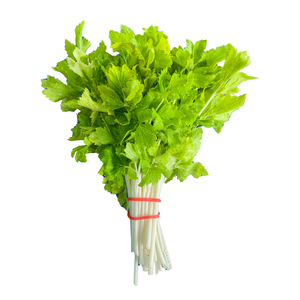White Queen Celery - 1 bunch