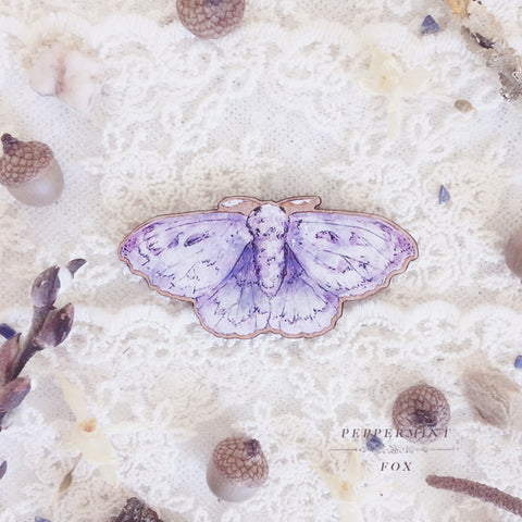 Little Moth Specimen Brooch