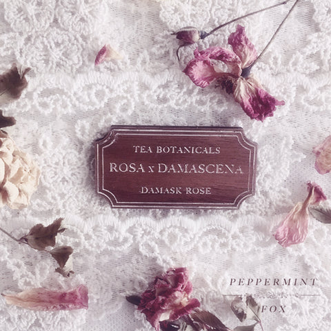 Tea Botanicals Rosa x Damascena Brooch