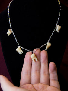 Set of 5 Molar Teeth Necklace